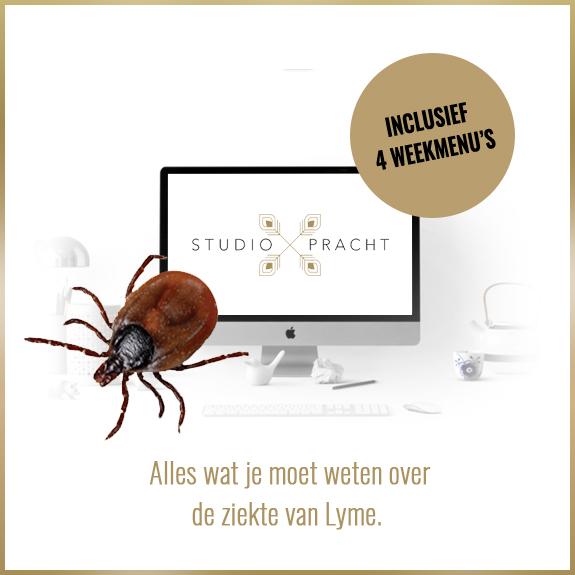 Alles wat je moet weten over de ziekte van Lyme met de online training van Studio Pracht.